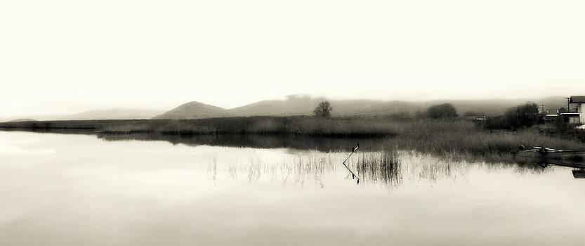 Lakescape Bw by Ioanna Papanikolaou