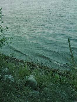 Lakeside at Dusk by Gina Bonelli