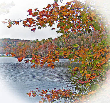 Patricia Taylor - Lakeside in the Fall