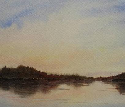 Lakeside Lights by Vikki Bouffard