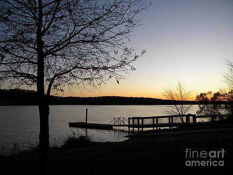 Jaclyn Hughes Fine Art - Lakeside Silhouette