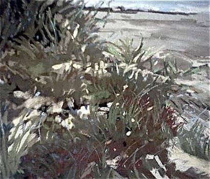Lambert's Cove MV by Valentine Estabrook