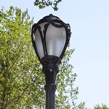 Eve Tamminen - Lamp In Central Park.  #iloveny