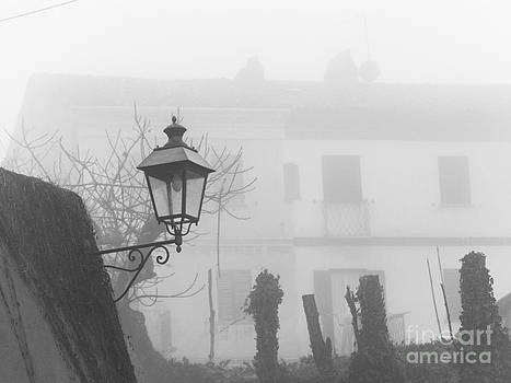 Lampost In The Fog by Stefano Piccini