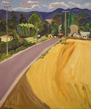 Land of Plenty Series by Kerrie B Wrye