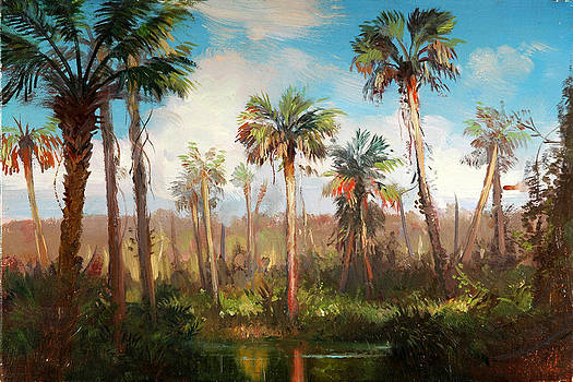 Land of the Seminole by Keith Gunderson