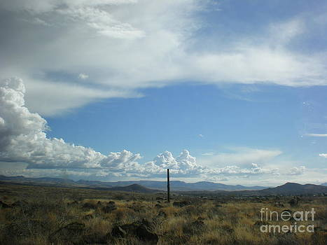 Land View Arizona by Debbie Wells