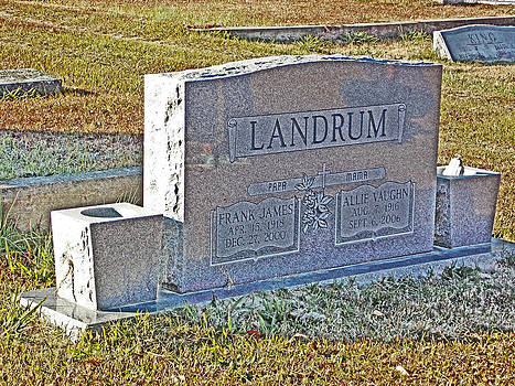 Landrum by Regina McLeroy