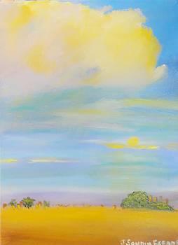 Lands of Soul by Juan Sandin