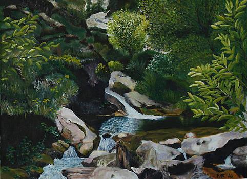 Landscape 101 by Pedro Riera