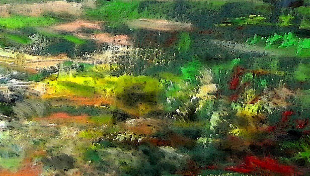 Landscape 4 by Marisa Gal