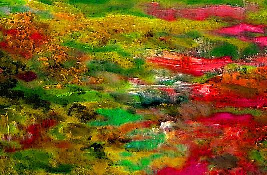 Landscape 5 by Marisa Gal