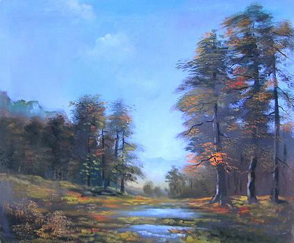 Landscape 6 by Marisa Gal