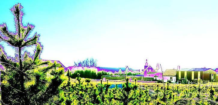 Landscape colored by Dana Hermanova
