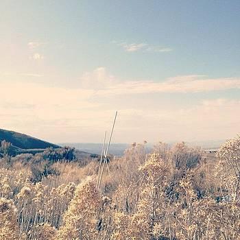 Landscape no. 1 by Rebecca Guss