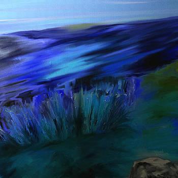 Shesh Tantry - Landscape no. 165