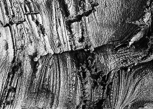 Henri Bersoux - Landscape Study 11
