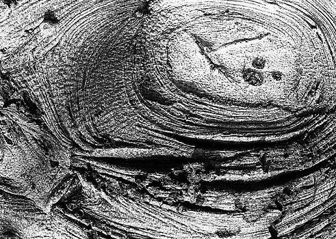 Henri Bersoux - Landscape Study 9