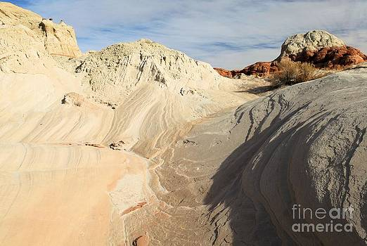Adam Jewell - Landscape Swirls