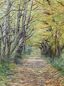 Landscape woods  by Jenny A Jones