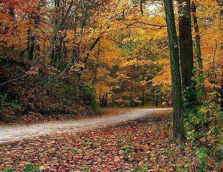 Lane in Fall by Virginia Folkman