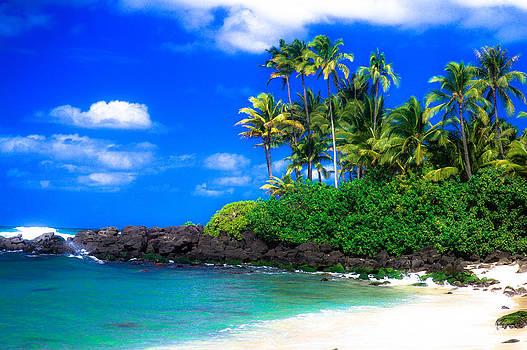 Laniakea Beach Oahu by Lisa Cortez