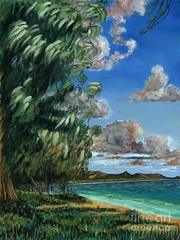 Lanikai beach by Larry Geyrozaga
