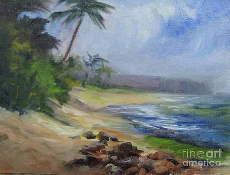 Lanikai Turtle Beach by Barbara Haviland