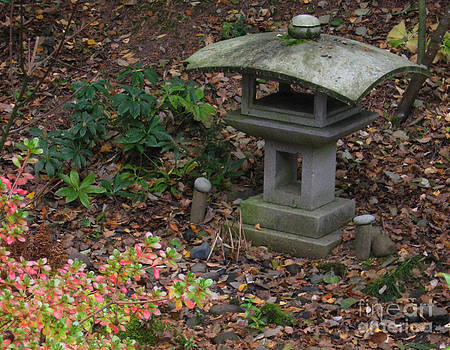Ellen Miffitt - Lantern in Yashiro Japanese Garden