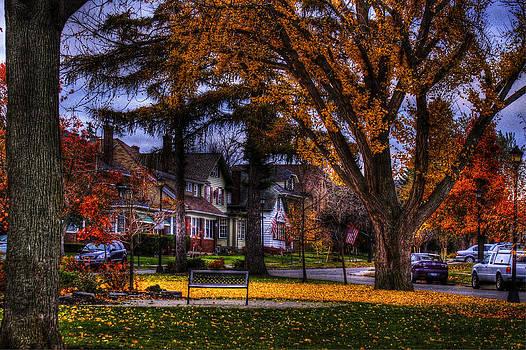 Larchmont-Radcliffe Park by Don Nieman