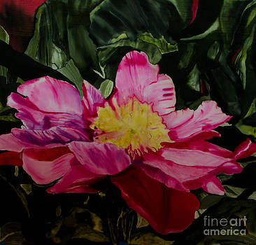 Large Pink Camellia by Goodson Kathy