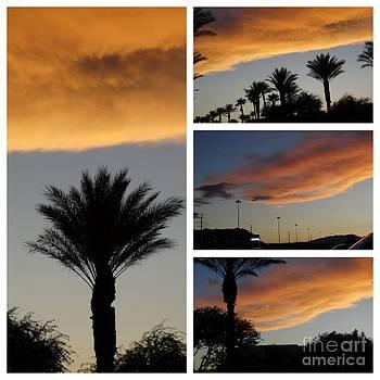 Las Vegas Sunset by Linda Xydas