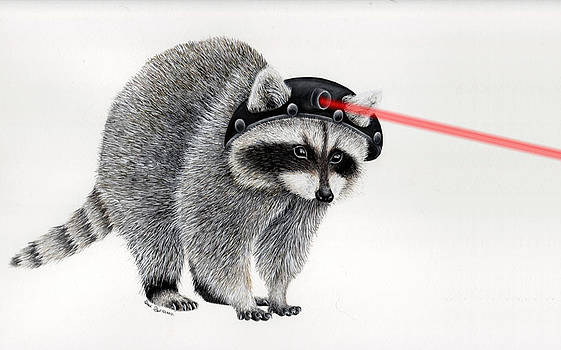 Laser Racoon by Sarah Sutherland