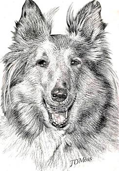Lassie by Janet Moss