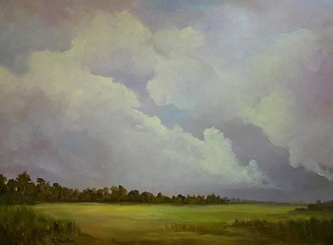 Last Light by Carol Thornton