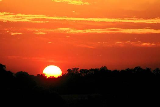 Last Light Sunset by Corey Haynes