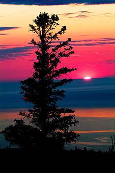 Devinder Sangha - Last minute Sunset