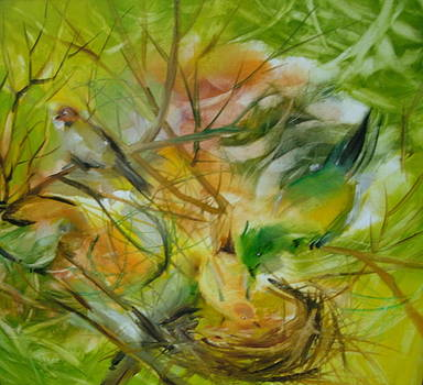 Last Years Bird Nest by Brent Vall Peterson