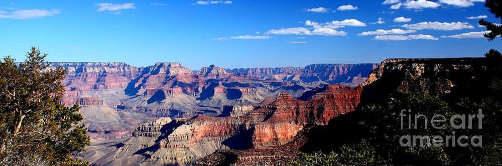 Patrick Witz - Late Afternoon Grand Canyon Panorama