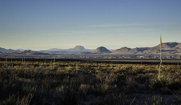 Alan Roberts - Late Afternoon in Big Bend