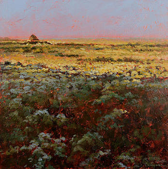 Late Afternoon Prairie by Carlynne Hershberger