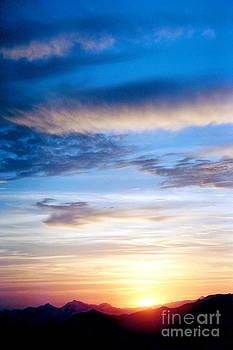 Douglas Taylor - LATE AFTERNOON SUN