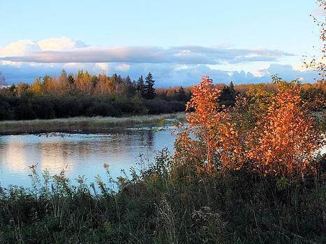 Late Day Pond by Gene Cyr