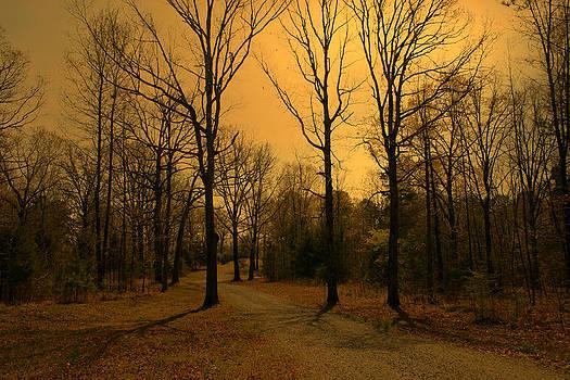 Nina Fosdick - Late Fall