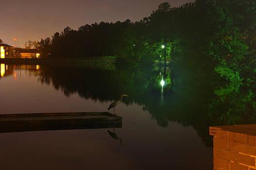 Walter  Holland - Late Night Fishing at Lake Midnight