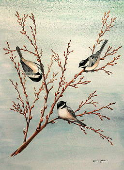 Late Winter Chickadees by Gina Gahagan