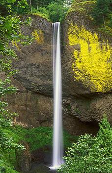 Latourell Falls by Russ Bishop