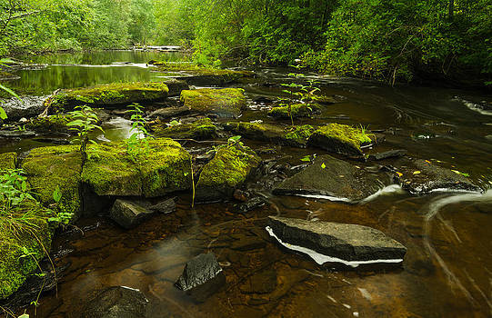 Laughing Fish River by Thomas Pettengill