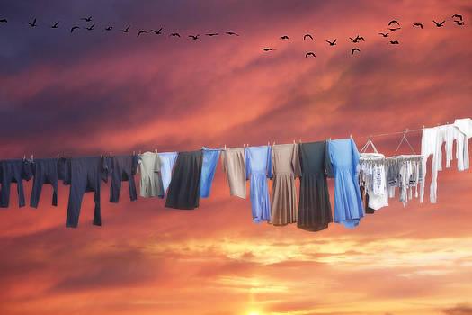 Laundry by David Simons