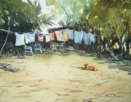 Laundry Day at Beachcamp by Donna Dickson